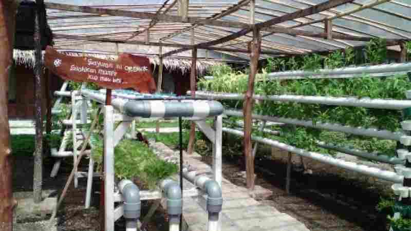 Menjelajahi wisata edukasi di Bhumi Merapi Sleman